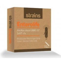 Orzax Strains Enterolife Probiyotik 5 ml x 5 Flakon